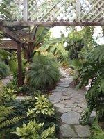 Jungle trails in the backyard.