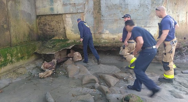 Firefighters from station 15 inspected the sinkhole and cave below it at 5:16 pm.